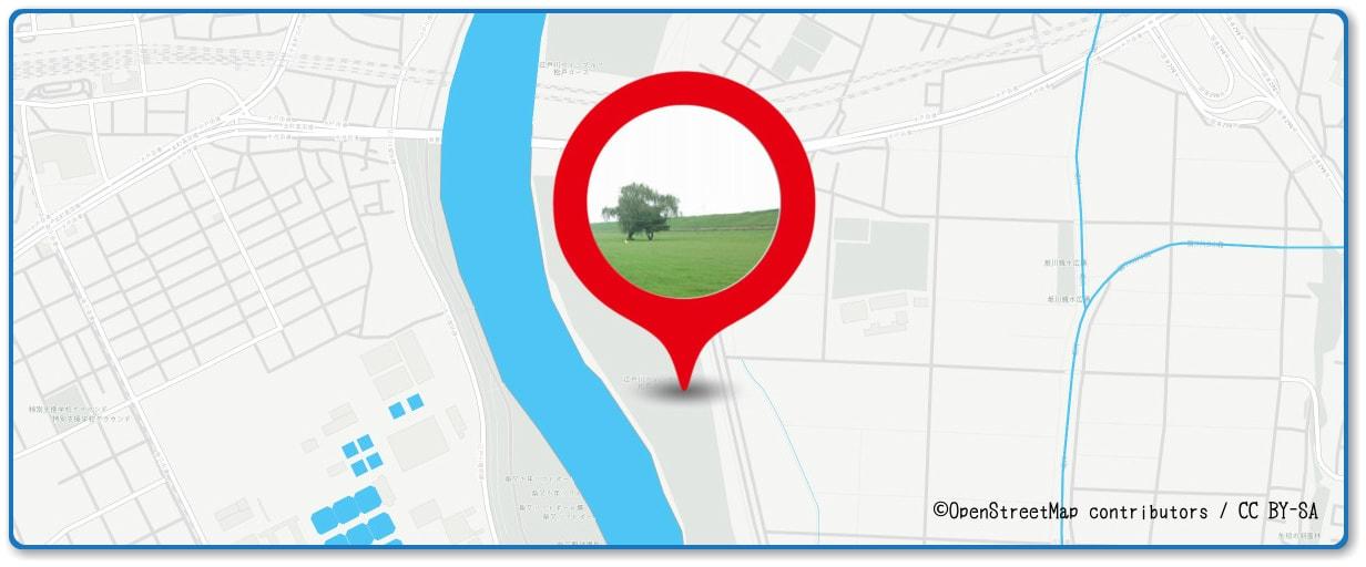 葛飾納涼花火大会の穴場 対岸の松戸川のゴルフ場付近の地図