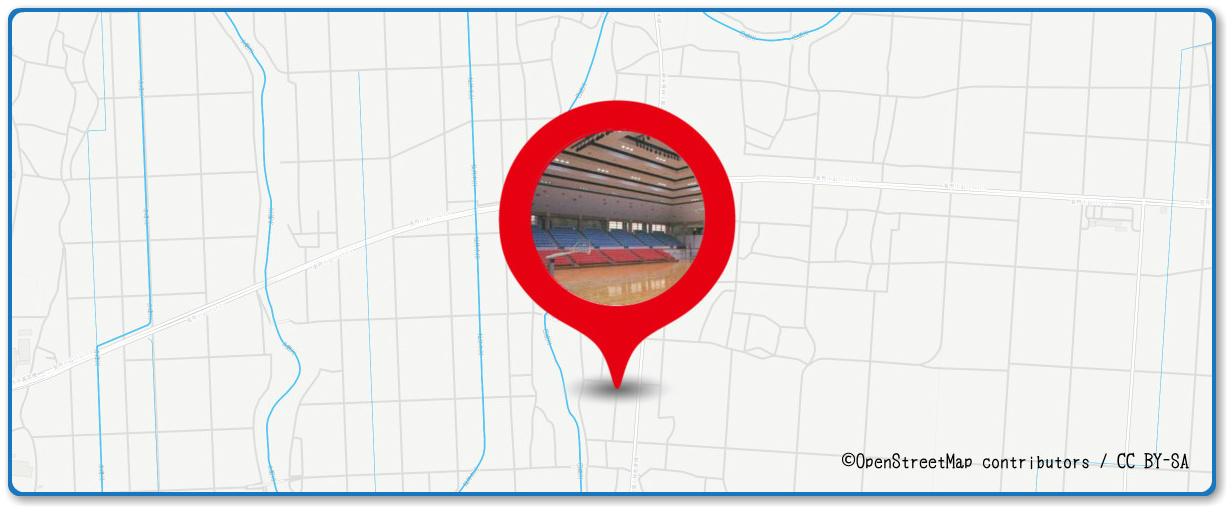 おやまサマーフェスティバル 小山の花火の穴場 栃木県立県南体育館周辺の地図
