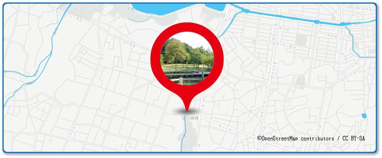水戸黄門まつり花火大会の穴場スポット 逆川緑地周辺の地図