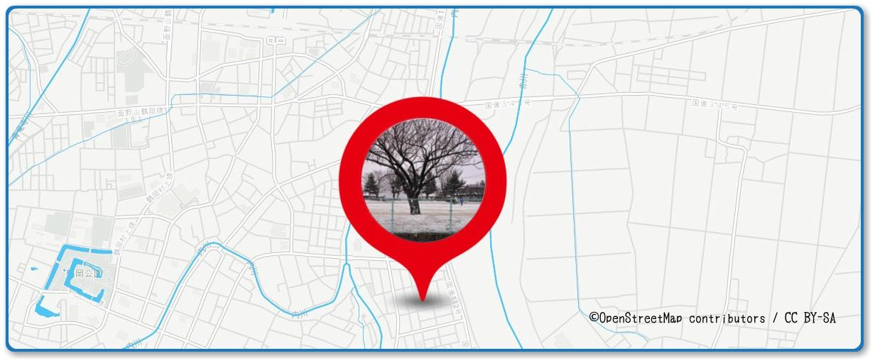 赤川花火大会の穴場スポット 鶴岡東公園周辺の地図